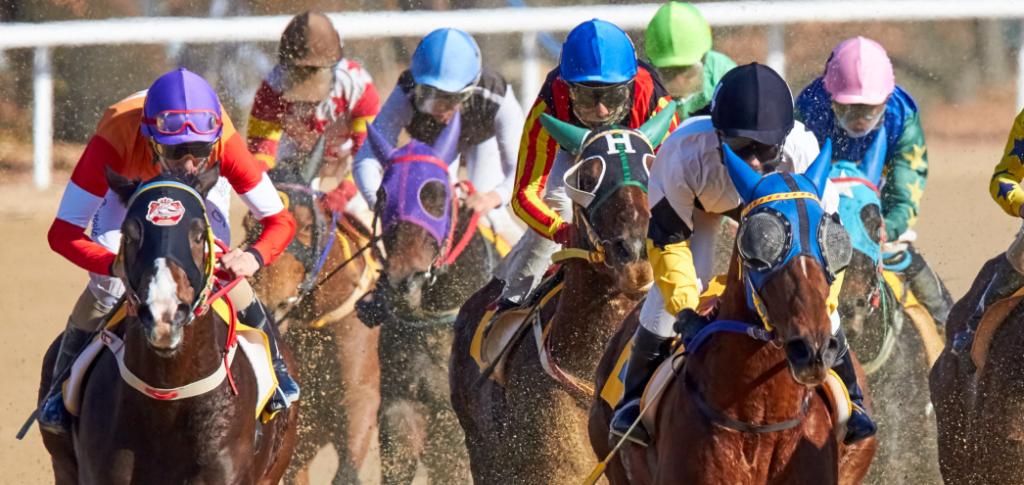 投稿画像 あなたが日本の競馬について知る必要があるすべて 勝ち 1024x485 - 日本の競馬について知っておくべき全てのこと