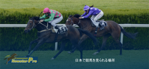 FeaturedImages 日本で競馬を見られる場所 300x140 - FeaturedImages-日本で競馬を見られる場所